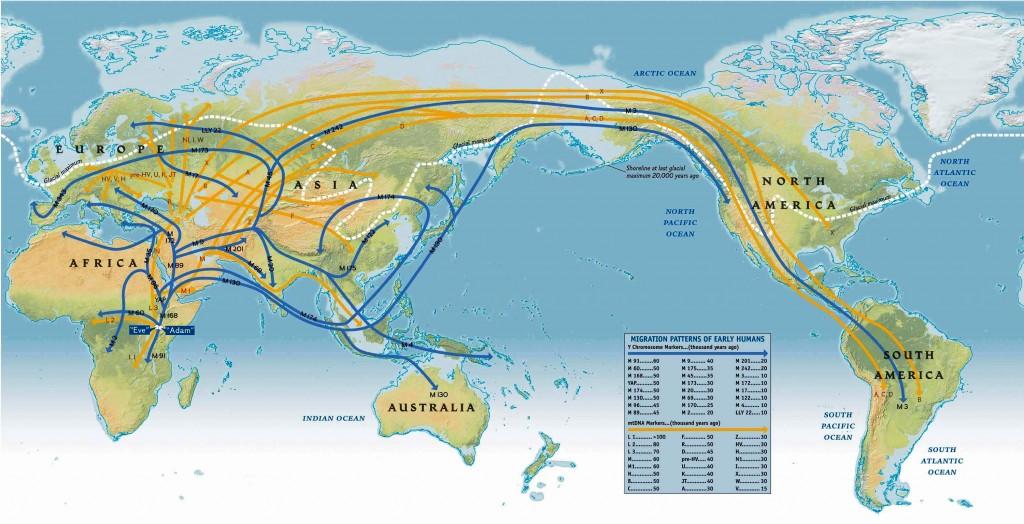 Некоторые из миграционных